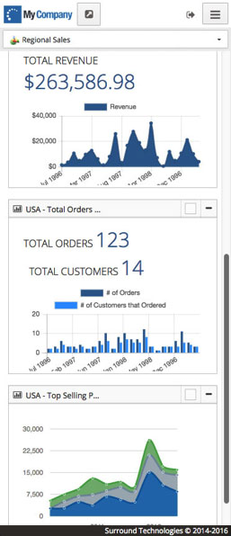 Line-of-Business Mobile Dashboard